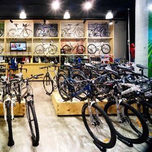 Какой бюджетный велосипед лучше выбрать: Штарк, Стелс или Форвард